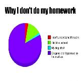 Why I Don't Do My Homework