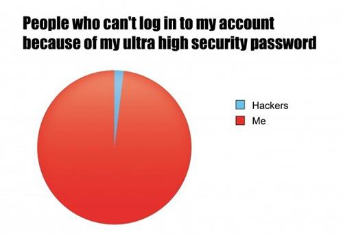 High Security Password Pie Chart