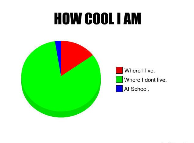 How Cool I am Pie Chart