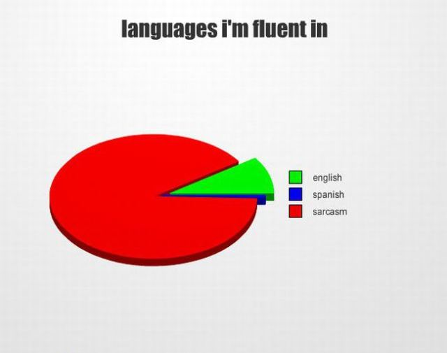 Languages I'm Fluent In Pie Chart