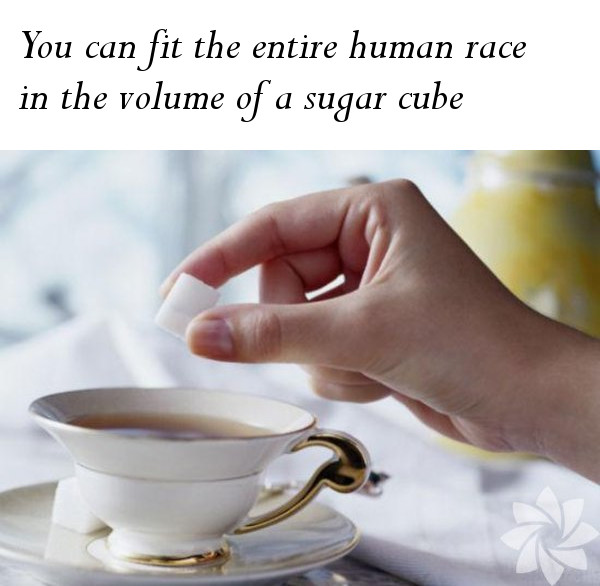 The Entire Human Race in a Sugar Cube
