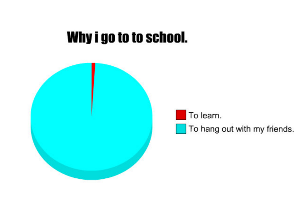 Why I Go to School Pie Chart